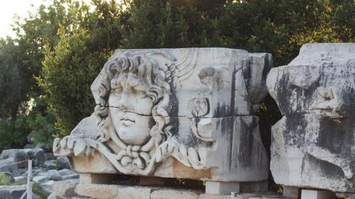 Head of Medussa